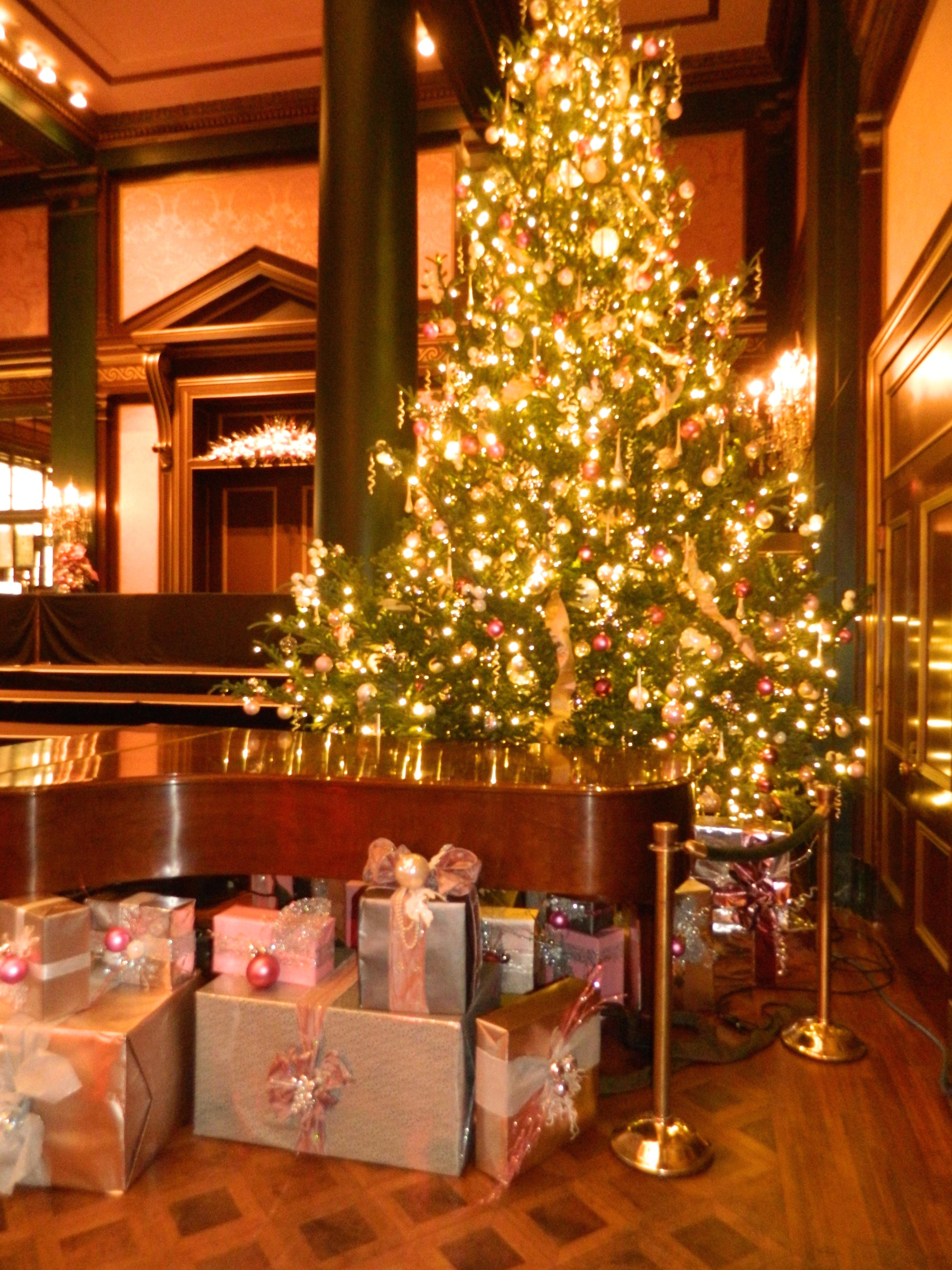 A Longwood Christmas - Sugarpeel, Philadelphia Marketing Consulting